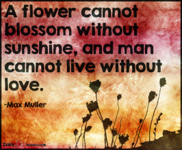 A flower cannot blossom without sunshine, and man cannot live without love