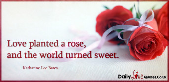 Love planted a rose, and the world turned sweet